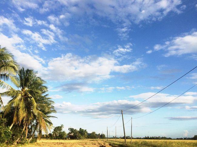 Blue Sky Kampung