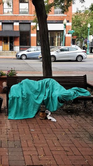 Homeless Shroud Homeless Sleeping Sheet Draping, Destitute Urban Shroud Mummy City Tree Low Section Car Street Architecture Building Exterior Built Structure Sidewalk Napping Paving Stone Pavement Laziness Bedtime