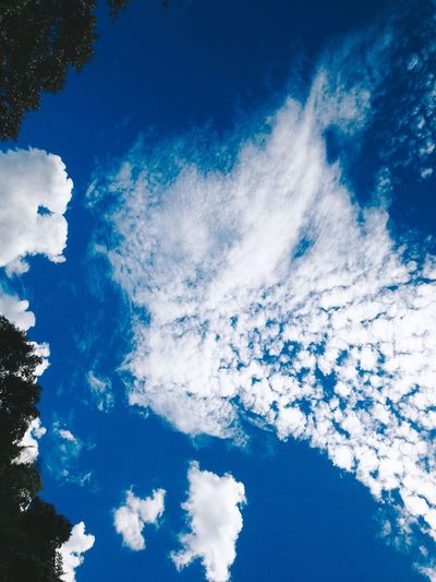 sky Blue Cloud - Sky Sky Low Angle View No People Scenics - Nature Beauty In Nature