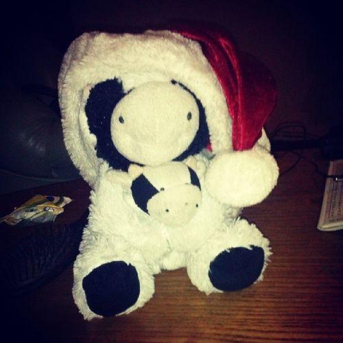 Santa Cow! Cow Santa Santacow Lovecow cowlove cowlover cowoholic cows instaphoto