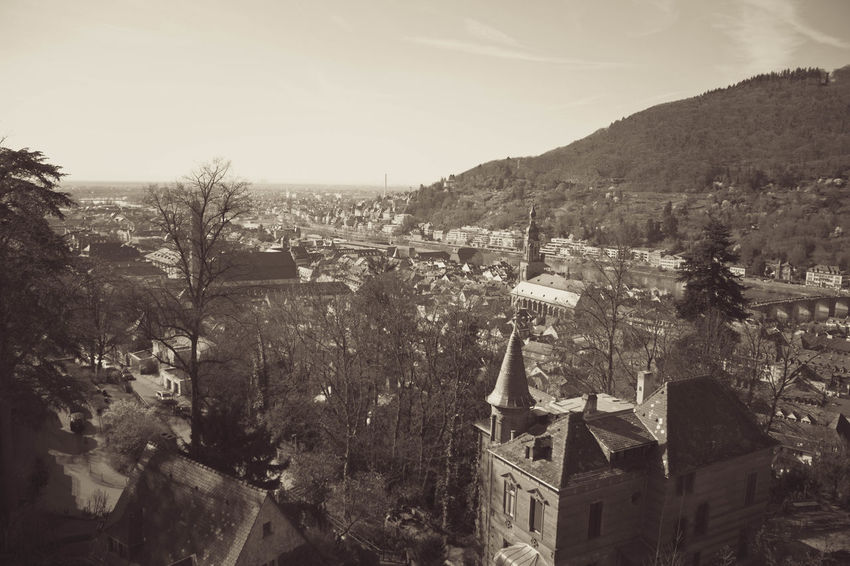 Heidelberg Architecture Beauty In Nature Building Exterior Built Structure Clear Sky Day Heidelberger Schloss Mountain Nature No People Old Outdoors Sky Town Tree