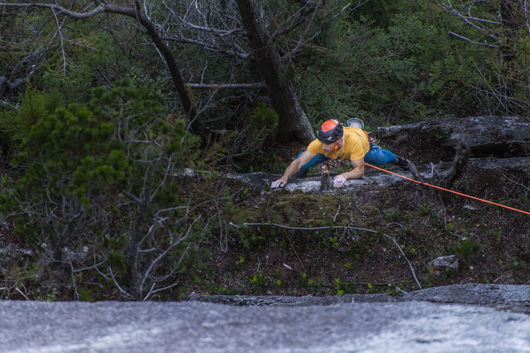Man climbing on rope in forest