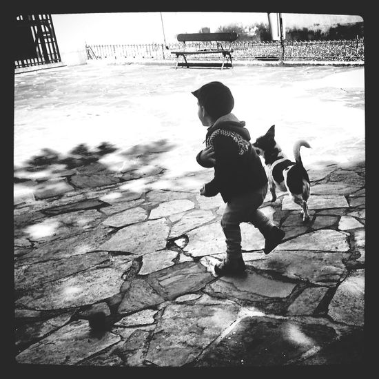Kids Playing With The Animals Black & White In The Park Lia