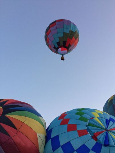 Early riser ✨♨️💨🎈😃 Tadaa Community Hot Air Balloon Multi Colored Adventure Flying Transportation Ballooning Festival Mid-air Day Clear Sky Low Angle View Air Vehicle Variation Outdoors Blue Sky Extreme Sports IPhoneography No People