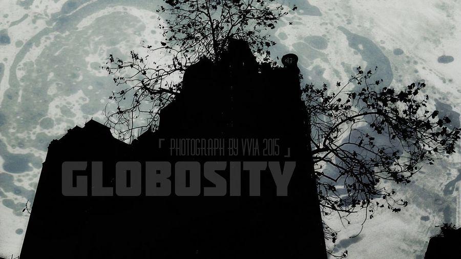 Globosity Globosity TreePorn Photograph By VviA