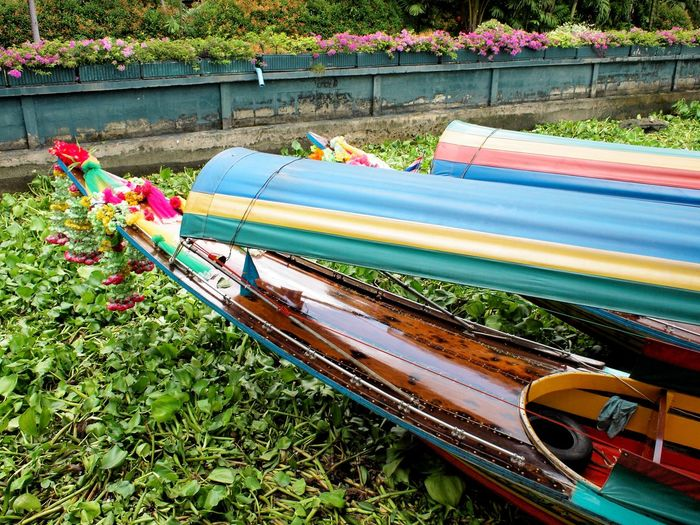 ASIA Bangkok Boat Canal Colorful Flower Green Long-tail Boat Longboat Mode Of Transport Multi Colored Nature No People River Southeast Asia Spotted In Thailand Thailand Transport Transportation Travel Water