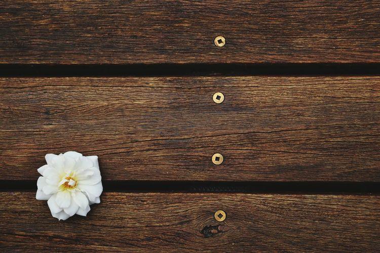 Flower Wood -