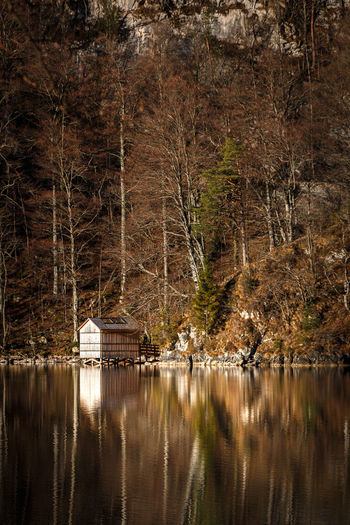 Scenic view of lake by trees and shack in forest
