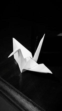 Dormir nois não consegue, mas é cada arte que nois faz... Origami Tsuru Art Japonese Nightphotography Brazilianboy