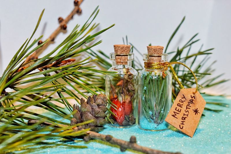 Handmade For You Plant No People Leaf Close-up Pine Cone Needle - Plant Part Christmas Ornament Present Freshness Merry Christmas ♡ Pine Pine Needles Handmade Needles Handmade Gifts Handmade By Me Wintertime Christmas Decoration Be. Ready.
