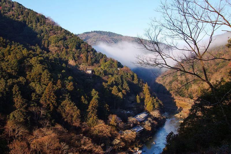 Kyoto Arashiyama Fog Mountain Landscape Landscape_Collection River Nature Morning Sky EyeEm Nature Lover Beauty In Nature Nature_collection Taking Photos Eye4photography  From My Point Of View