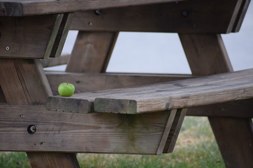 An apple in the Calvados region on France Architecture Ball Bench Birdhouse Brown Built Structure Close-up Day Focus On Foreground Low Angle View Nature No People Outdoors Seat Selective Focus Sport Still Life Table Wood Wood - Material