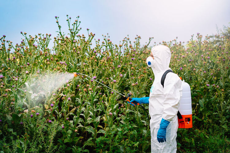 Man in protective workwear spraying herbicide on plants