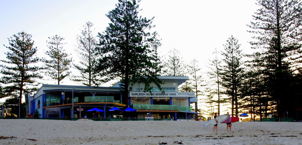 Architecture Bare Tree Beach Blue Built Structure City Life Day GoldCoast Nature Outdoors Queensland Australia Sky Surf Club Surfing Travel Destinations Travel Photography Tree Weather