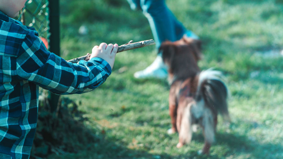 Midsection of boy holding stick with dog on field