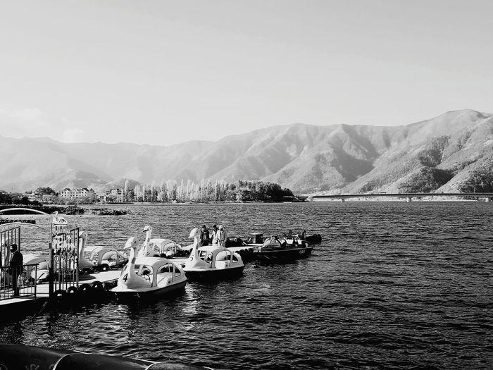 Black And White Friday Swans lake Japan Photography Kawaguchiko Lake Mountain People Sky Travel Photography EyeEm Selects
