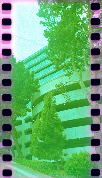 Parking Lot Sprockets Lubitel 166+ Koduckgirl Film