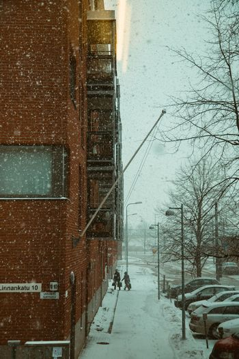 City Street Snowing Street Portrait Couple Back View Rear View Companion Partner Snow Cold Temperature Building Exterior Architecture Built Structure Winter City Building Day Street Snowing Outdoors It's About The Journey