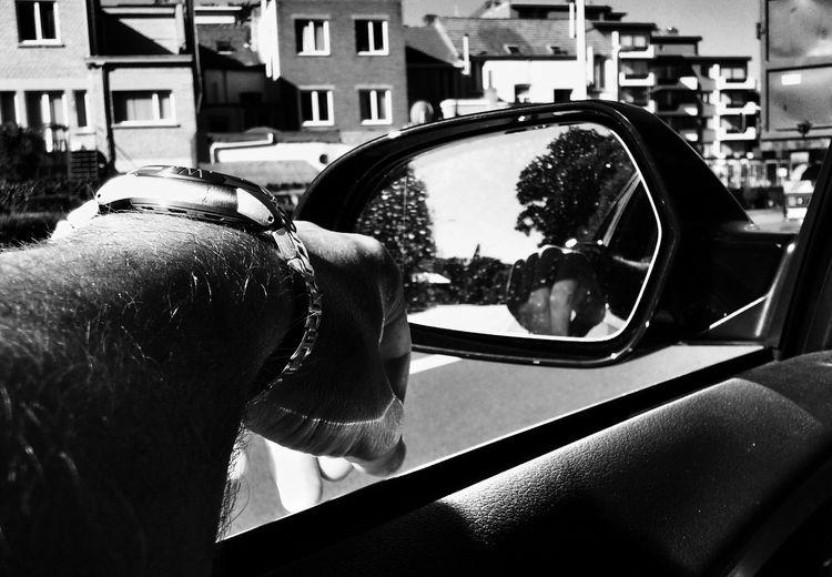 Just Driving Stoplight