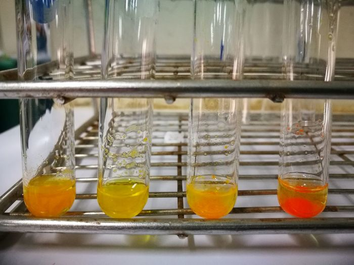 Close-up of chemical in test tubes