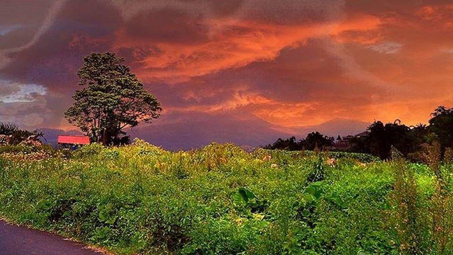 Gunung lokon di tomohon 12.00 PM Editan by mix Instagram Bafotosulut Lokon Wewehan Wewehanadventure Zonaphotography Zonafotografi Wonderfulindonesia BeautifulIndonesia
