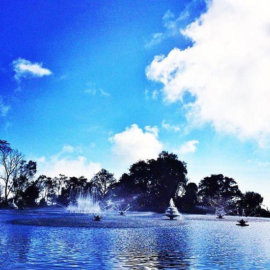Blue sky ⛅️☁️