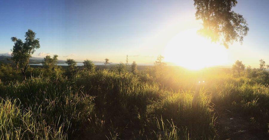 Bukit Melintang, Seram Bagian Barat, Pulau Seram, Maluku - Indonesia IPhoneography Vscocam