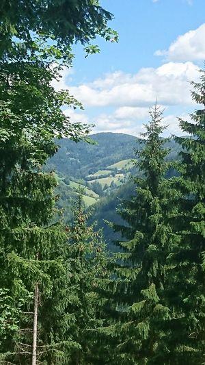 Bergwelten Taking Photos Eyemphotography EyeEmBestPics EyeEm Best Shots EyeEm Gallery Steiermark Österreich Austria Ausblick Beautiful Beautiful View
