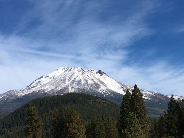 Mt Shasta Snow Mountain