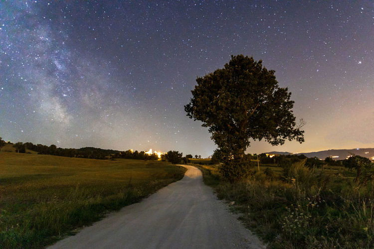 Road amidst trees on field against sky at night