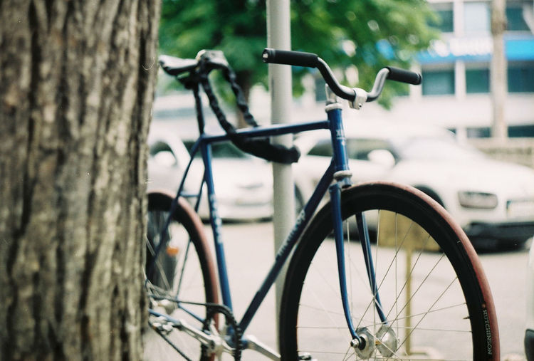 Close-up of bicycle parked by tree trunk