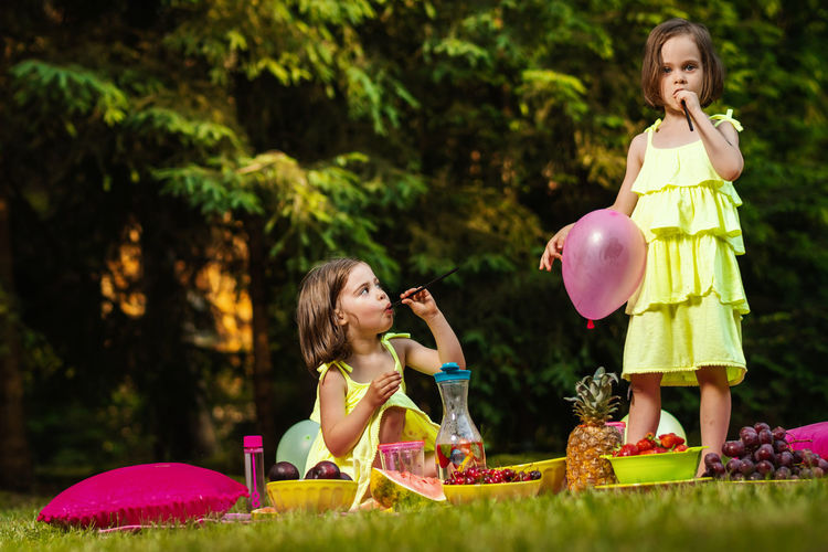 Picnic Girl Child Childhood Kid Forest Summer Sister Sisters Twins Women Girls Females Family Leisure Activity Real People Grass Togetherness Plant Group Of People Sibling Nature Full Length People Day Holding Outdoors Innocence