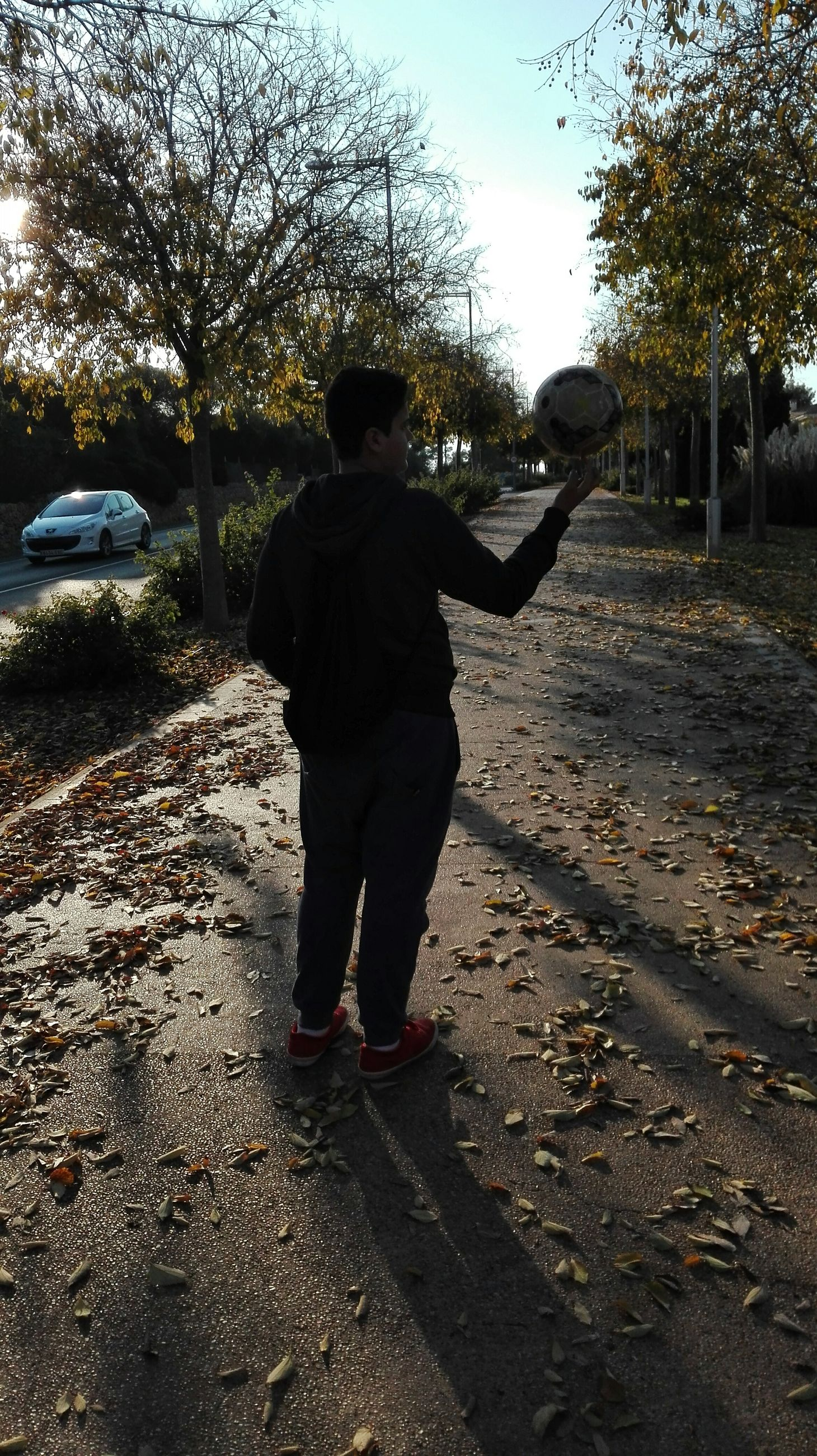 rear view, full length, lifestyles, tree, walking, leisure activity, casual clothing, men, the way forward, sunlight, street, season, standing, outdoors, childhood, shadow, road, sky