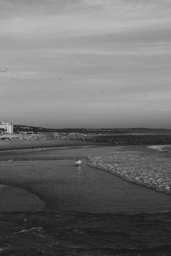 Portgal Blackandwhite September Happiness Surfing Seascape EyeEm Gallery EyeEm Best Shots Beach Surf Sport Water Sea Land Beach Sky Scenics - Nature Beauty In Nature Horizon Over Water Nature Horizon Day Bird Tranquil Scene Outdoors Real People Tranquility