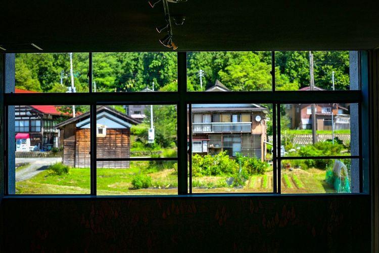 この風景がたまらなく好きだ。I love this scenery! Window View Plant Architecture Built Structure Window Glass - Material Green Color Building Exterior Tree No People Day Transparent Building Nature Growth Outdoors Residential District House City Window Frame
