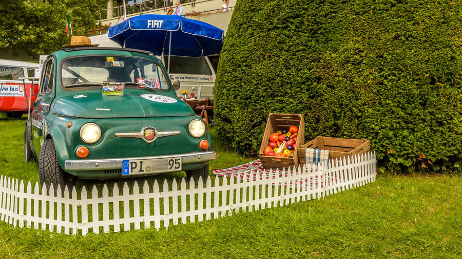 Fiat 500 Abarth 595 SS City Nord Classic Car Deutschland Fiat Hamburg Abarth Day De Fiat500 Germany Grass Green Color Moto Revival Nature No People Oldtimer Outdoors Stadtparkrevival Transportation Tree