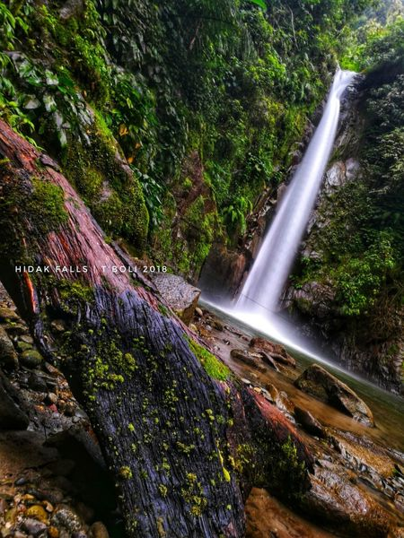eco Sox Philippines Soccsksargen Experiece SOCCSKSARGEN Water Tree Waterfall Spraying Motion Long Exposure High Angle View Power In Nature Irrigation Equipment Flowing Water Falling Water Splashing Woods High-speed Photography Rapid