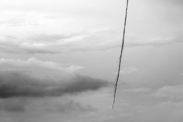 Abstract of air roots dancing high in cloudy sky. Abstract Air Roots Alone Artistic Atmospheric Mood Black And White Breeze Clouds Cloudy Dancing Film Floating High Lonely Noise Roots Single Vintage Wind