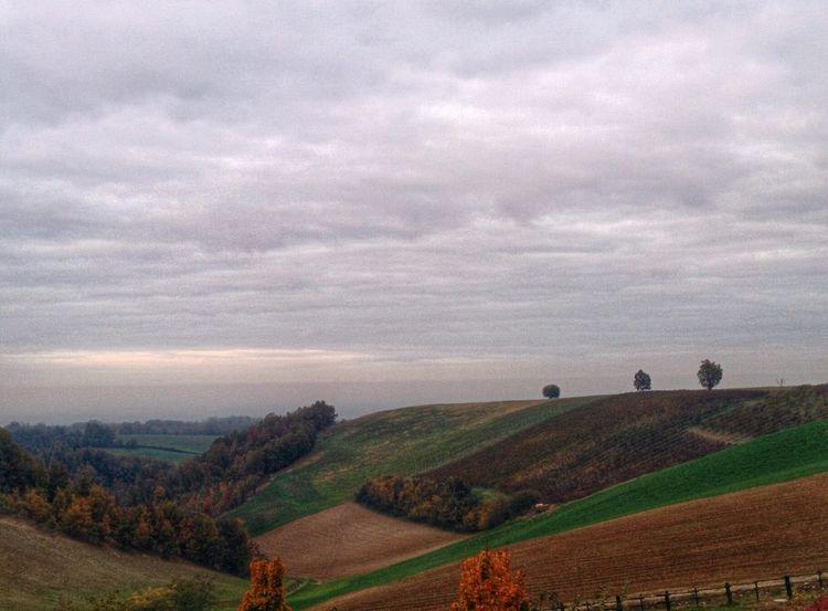 Scorci piacentini... Clouds And Sky Scapes In Vino Veritas Autumn Colors