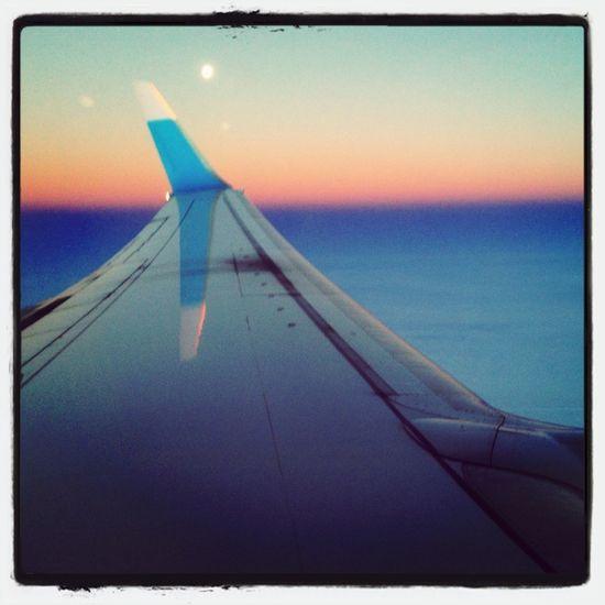 Blue Sky Plane Flying High