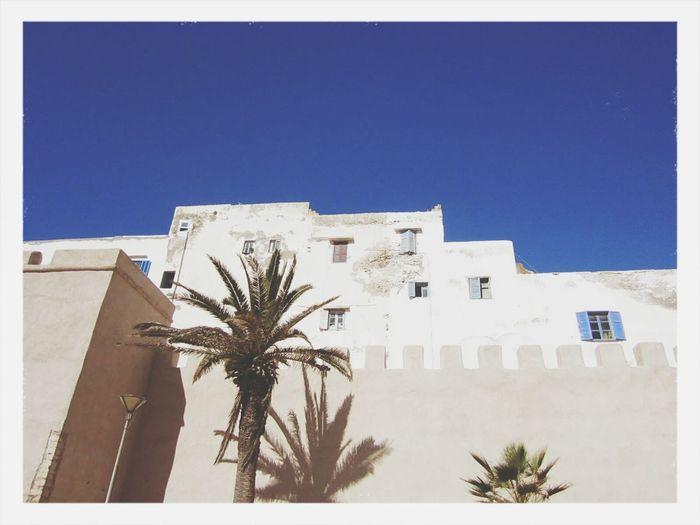 Marrocco Wand Sky Porn