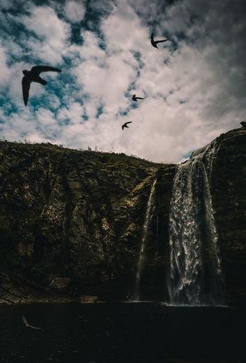 Bird flying over rock formation against sky