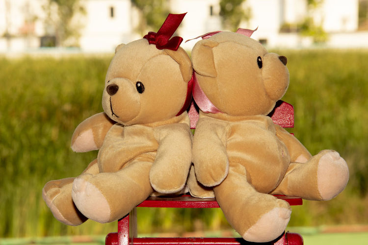 Close-up of stuffed toy