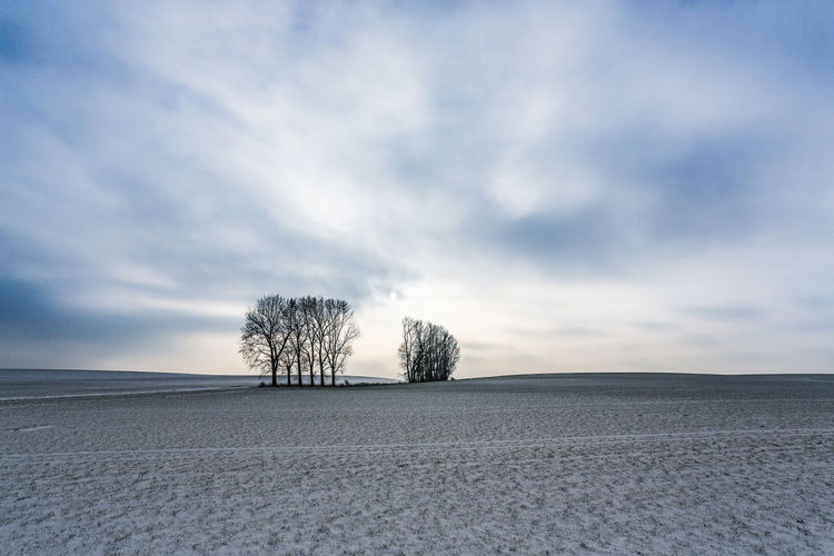 Bare Tree Beauty In Nature Branch Cold Temperature Day Landscape Lone Nature No People Outdoors Scenics Sky Snow Solitude Tranquil Scene Tranquility Tree Winter