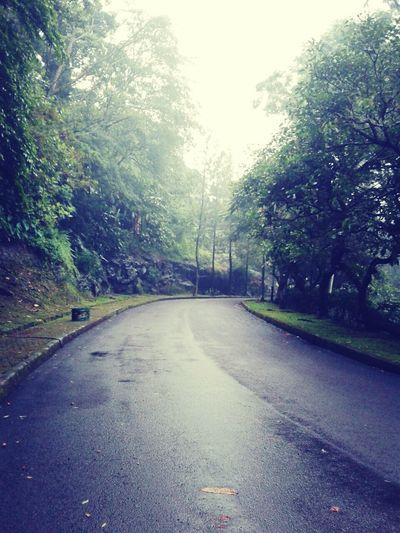 RainyDay Streetphotography