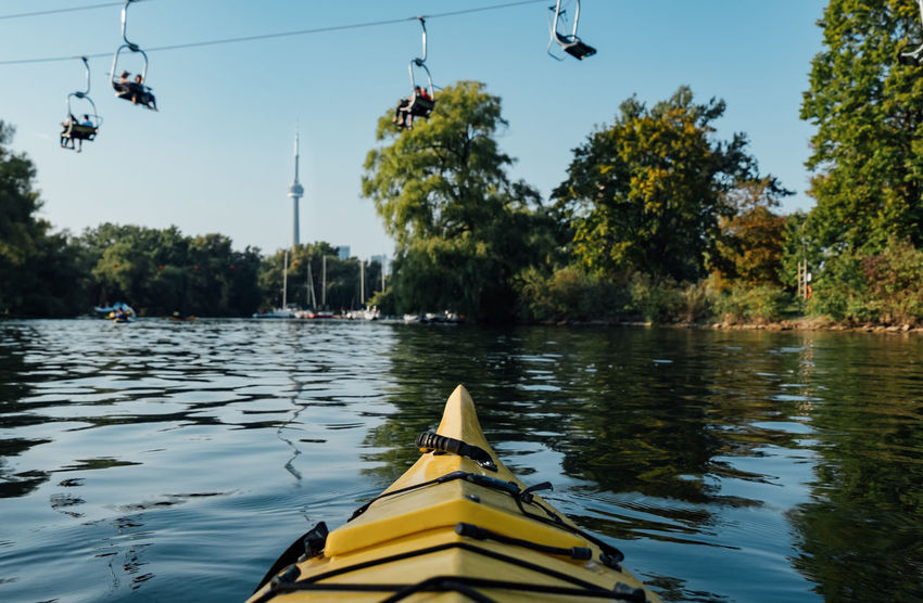 Kayaking around Toronto Islands Kayaking Animal Themes Animals In The Wild Beauty In Nature Bird Day Flying Lake Mammal Nature Nautical Vessel One Animal One Person Outdoors People Real People Scenics Sky Toronto Island Tree Water