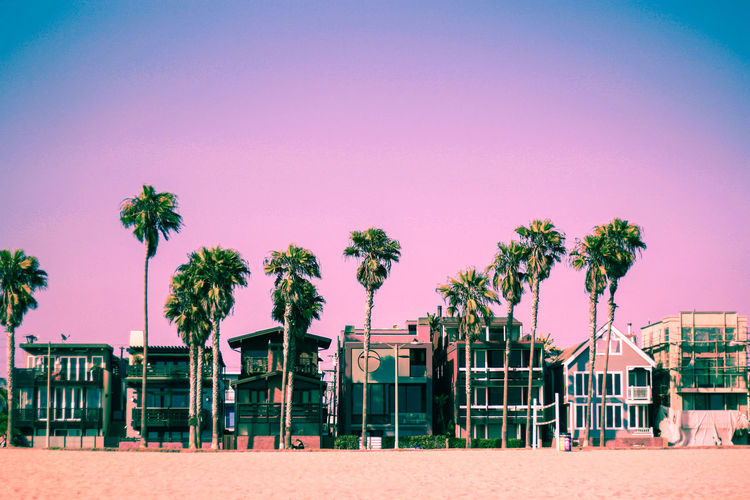 Venice Beach in Pink Tones Beach House California Holiday Los Angeles, California Palm Tree Pink Sunlight Architecture Art Beauty In Nature City Clear Sky Day Evening No People Palm Tree Pink Color Road Trip Roadtrip Sand Sky Sunset Venice Beach, California Wealth