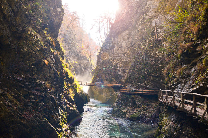 Beauty In Nature Bled Bled, Slovenia Blejski Vintgar Bridge - Man Made Structure Connection Day Forest Landscapes With WhiteWall Mountain Nature Reflection River Rock - Object Scenics Stream Sun Sunbeam Sunlight The Great Outdoors - 2016 EyeEm Awards Tranquility Tree Water Blue Wave