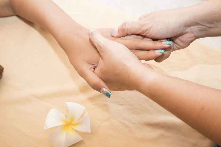 Hand spa Adult Body Part Close-up Finger Flower Flowering Plant Group Of People Hand High Angle View Holding Human Body Part Human Finger Human Hand Indoors  Leisure Activity Lifestyles People Real People Women