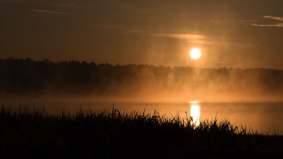 Magical sunrise with fog over a lake Beauty In Nature Day Grass Growth Idyllic Lake Nature No People Outdoors Reflection Scenics Silhouette Sky Sun Sunset Tranquil Scene Tranquility Travel Destinations Tree Water